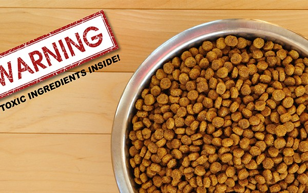 Prescription pet foods found to contain cancer causing toxins